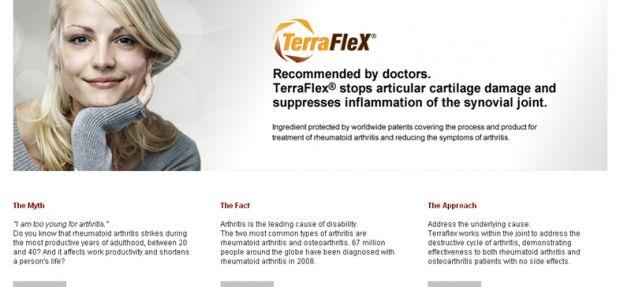 Web:: Terraflex